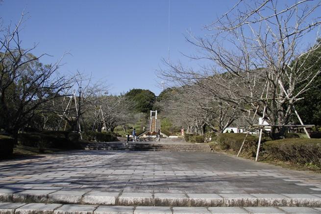 正面入り口の両サイドには桜の木。桜の名所としても有名です